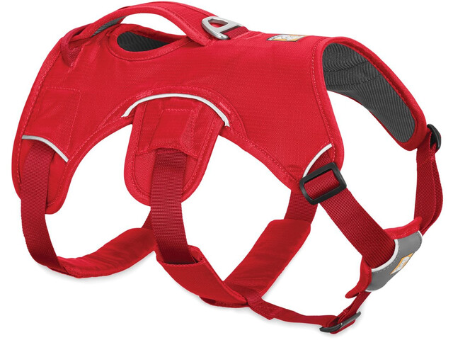 Ruffwear Web Master Baudrier, red currant